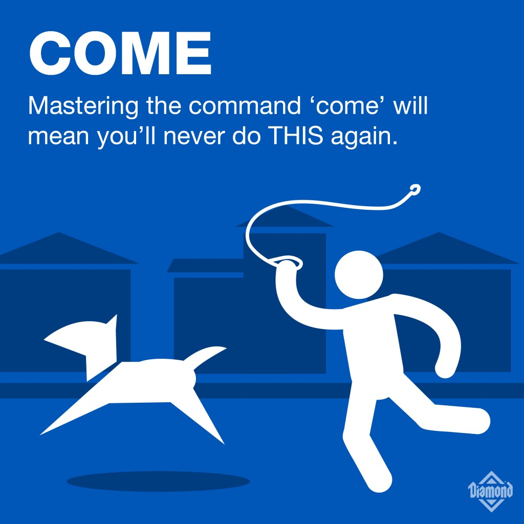 7_Commands-01