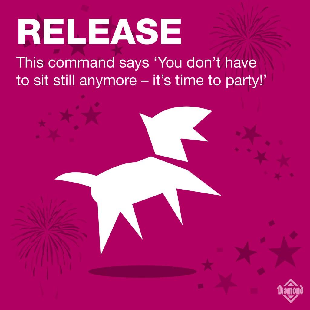 7_Commands-07