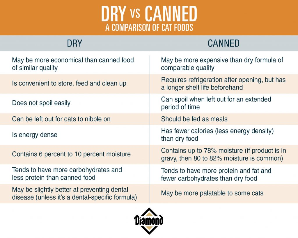 dry vs canned cat food pros and cons