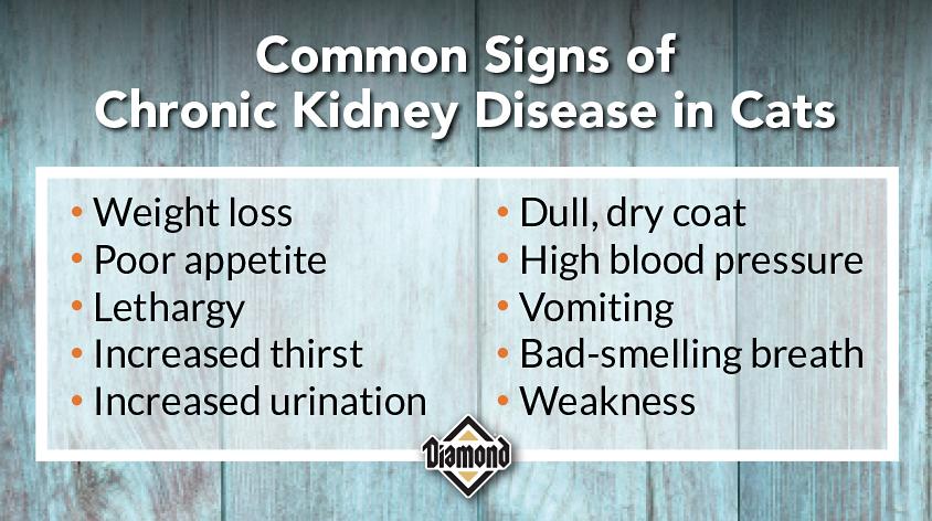 Kidney Disease_Chart