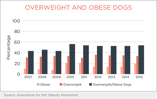 Overweight and Obese Dog Percentage Chart | Diamond Pet Foods