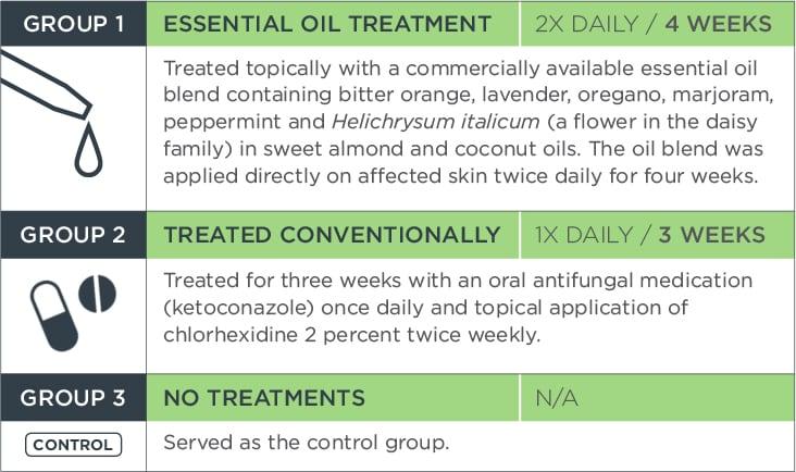 Essential Oil Study Chart | Diamond Pet Foods