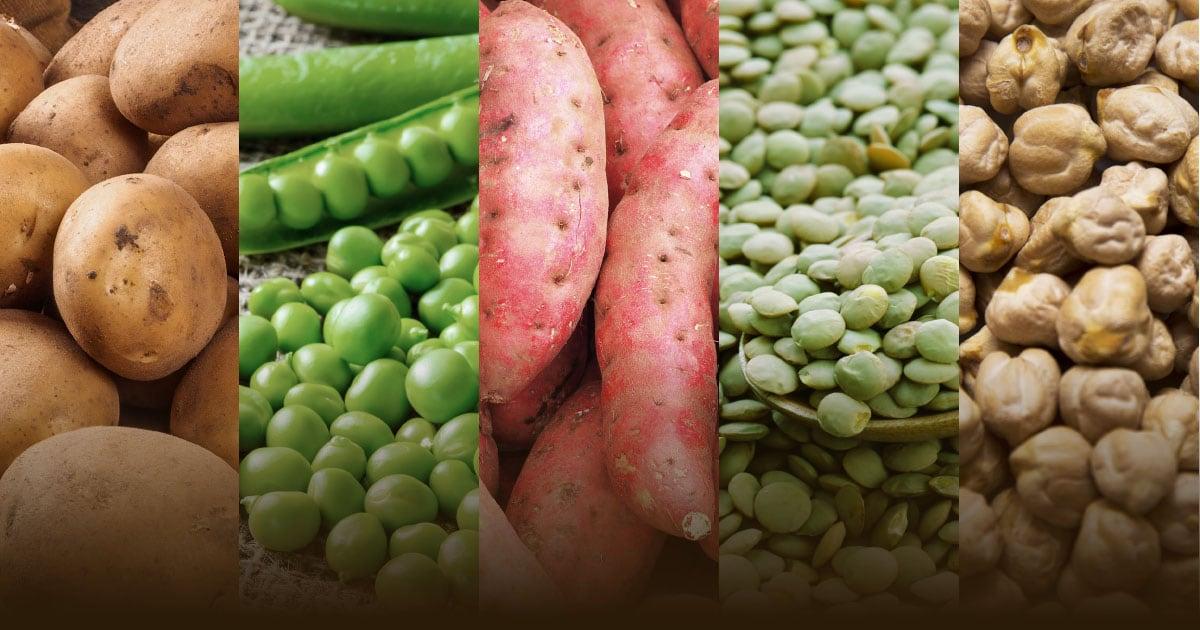 Various Vegetables | Diamond Pet Foods