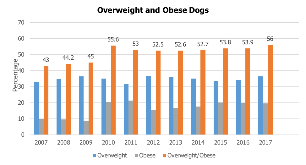 Overweight & Obese Dogs Chart