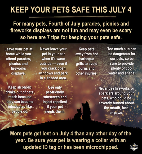 7 pet safety tips for the 4th of July