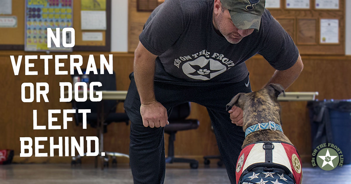 A Veteran Training His Dog