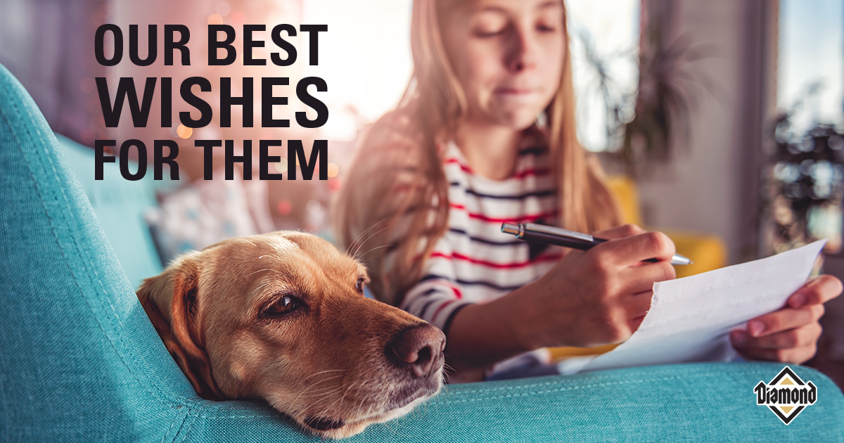 Our Best Wishes for Them | Diamond Pet Foods