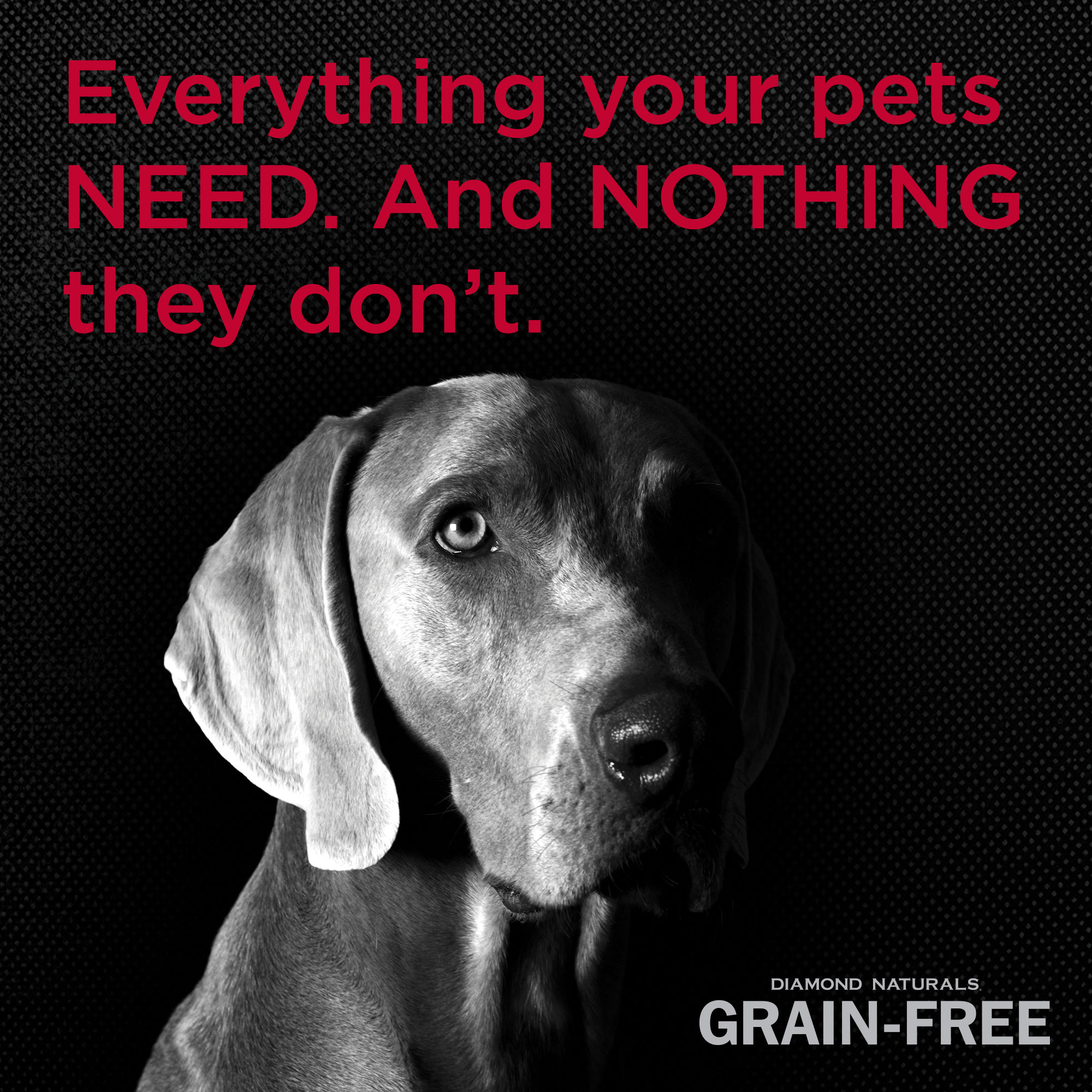 Diamond Naturals Grain-Free everything your pets need