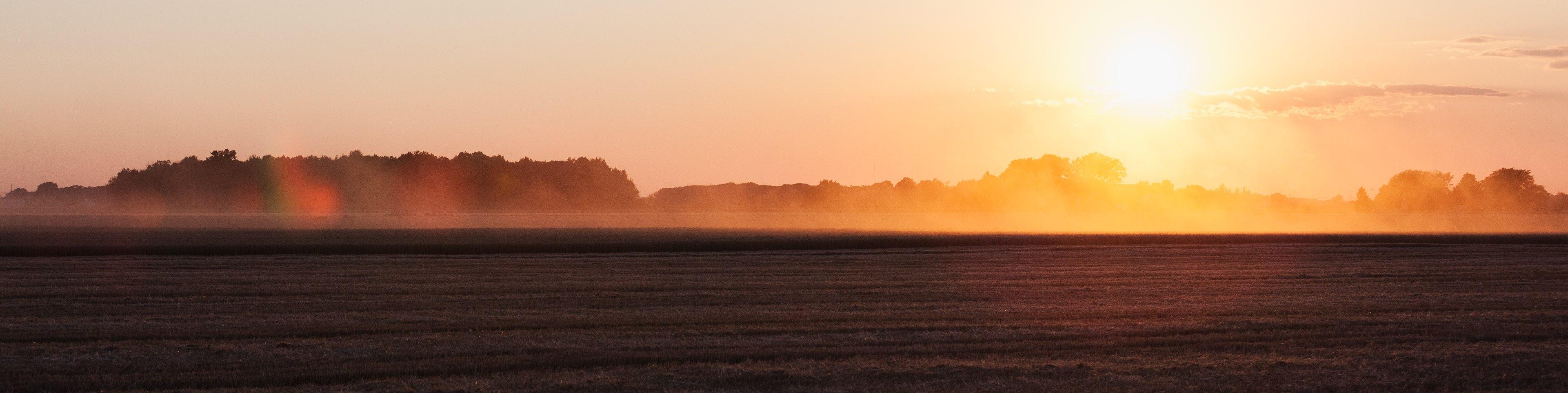 Field at twilight