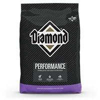 performance bag thumbnail | Diamond