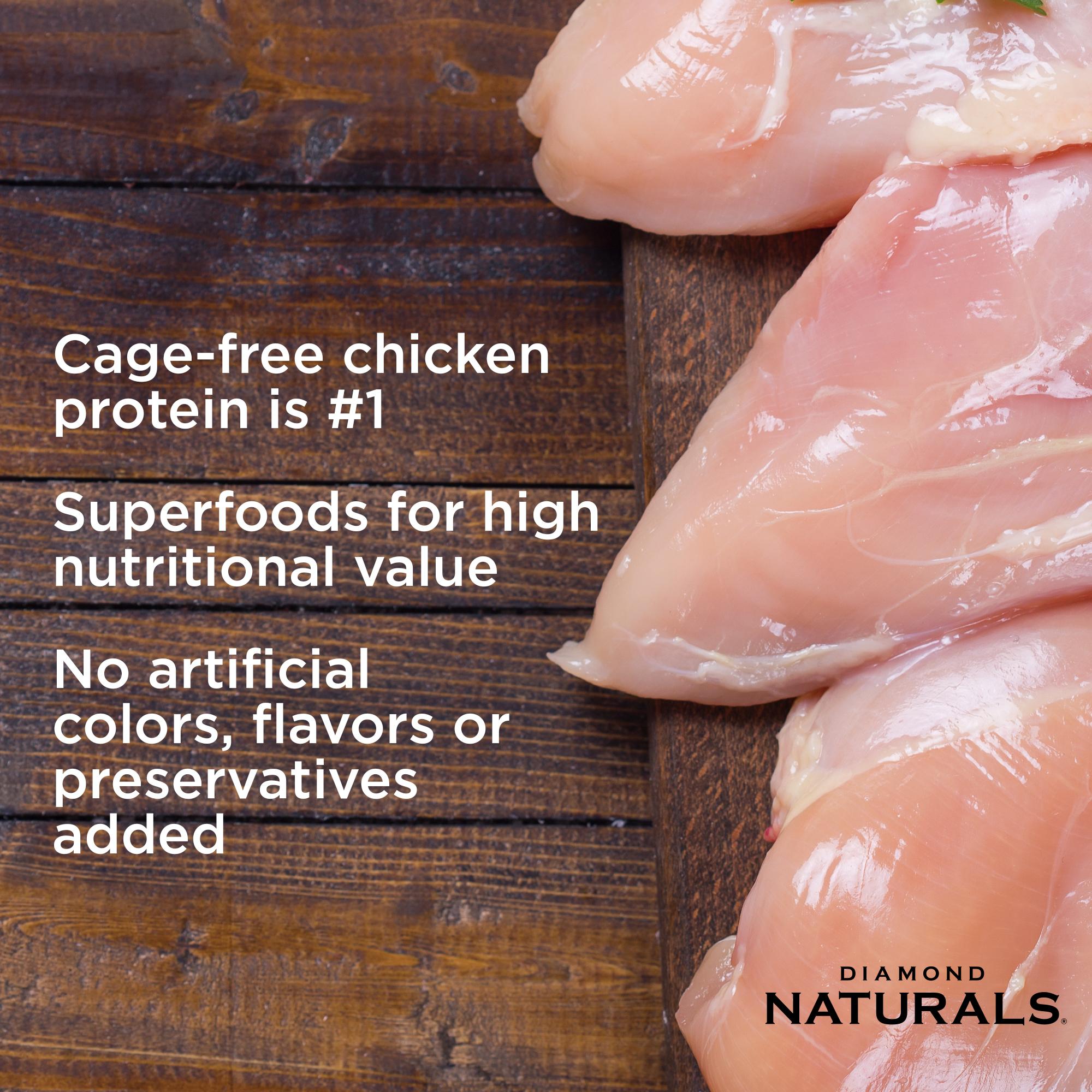 cage free chicken