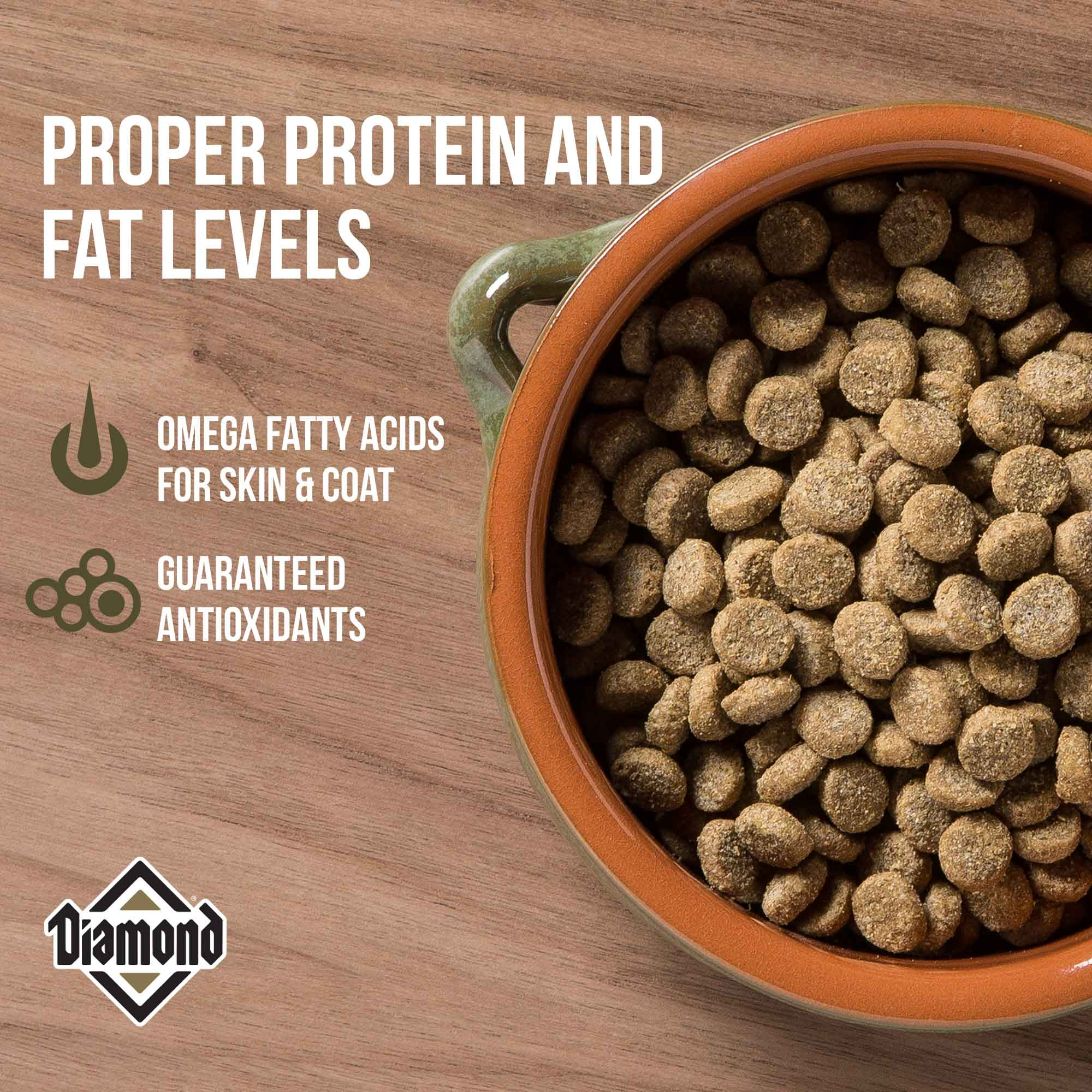 hi-energy protein and fat levels