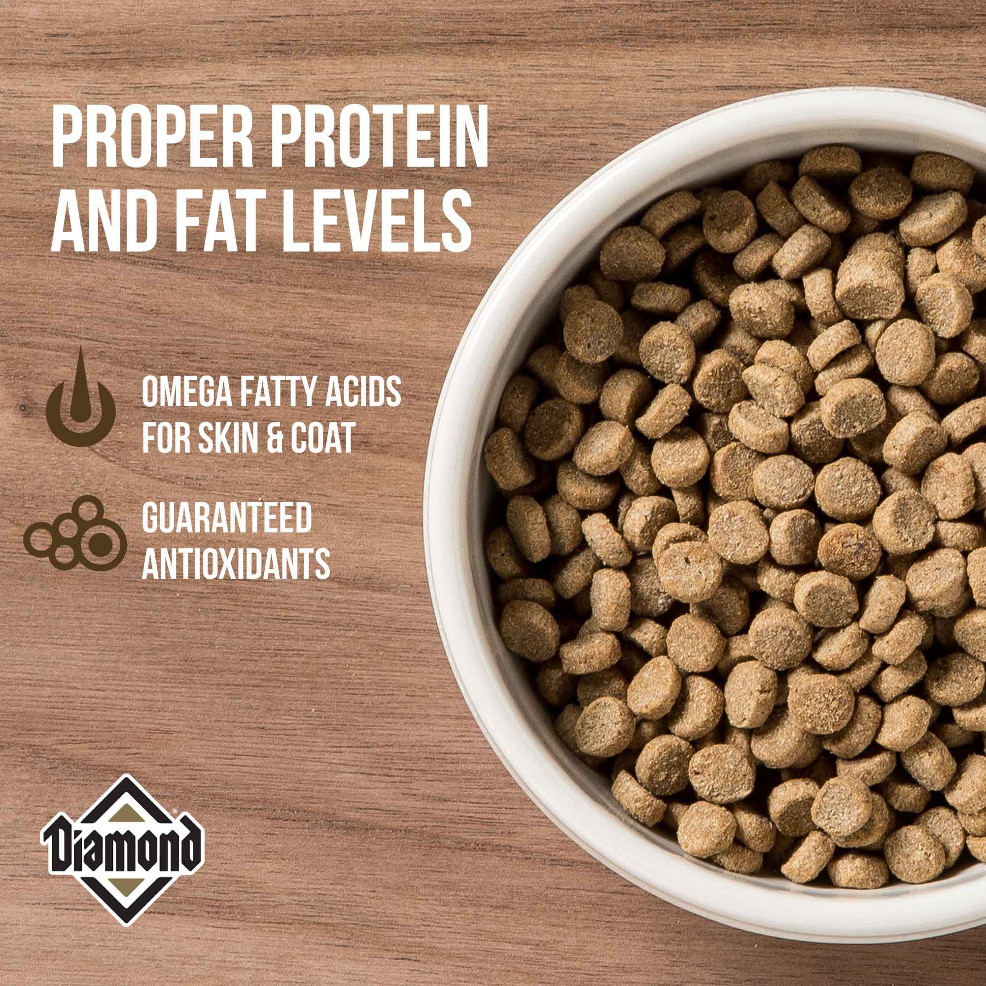 protein and fat levels