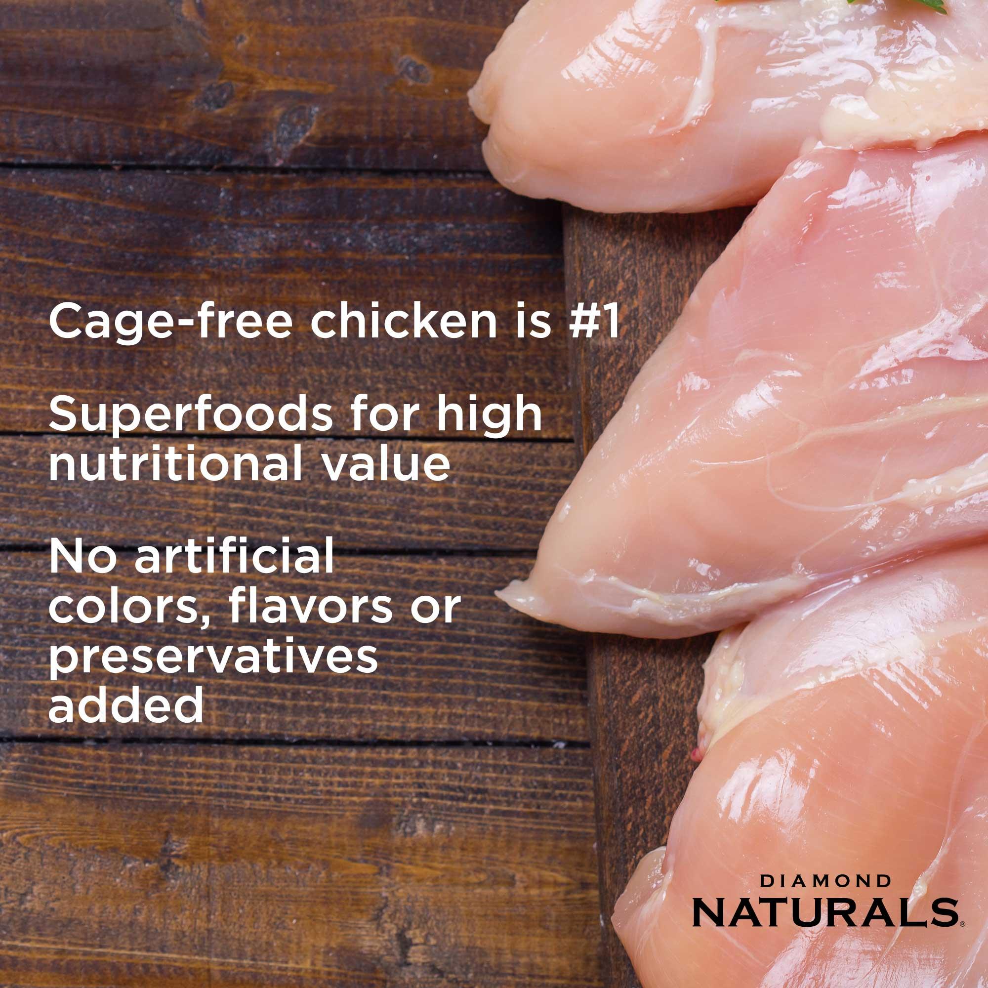 cage-free chicken