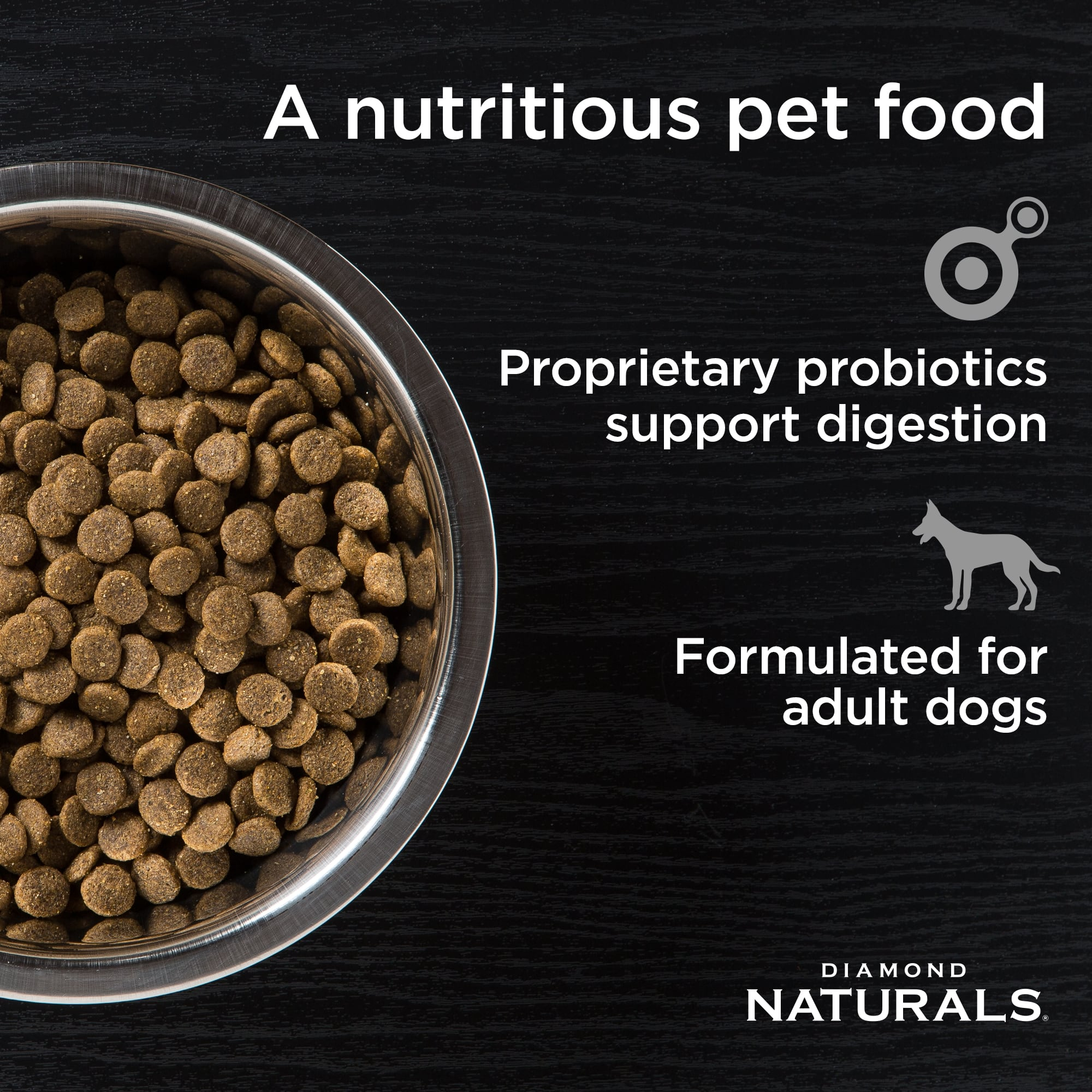 A bowl of beef meal and rice adult dog formula | Diamond Naturals