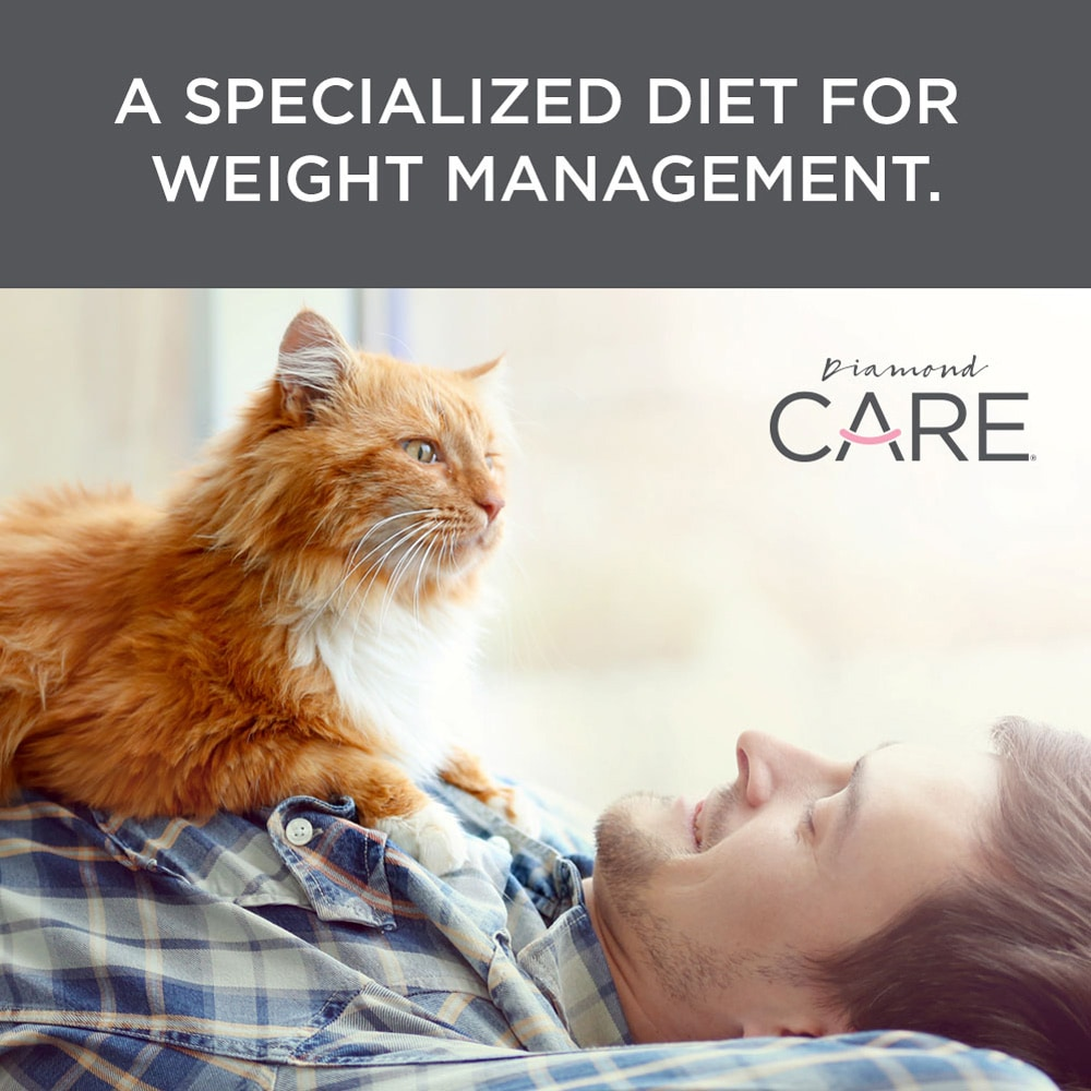 a specialized diet for weight management