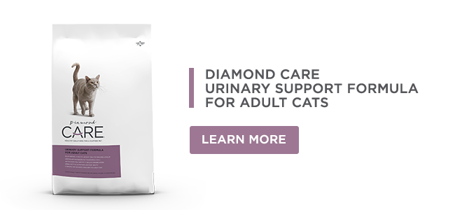 Urinary Support Formula for Adult Cats