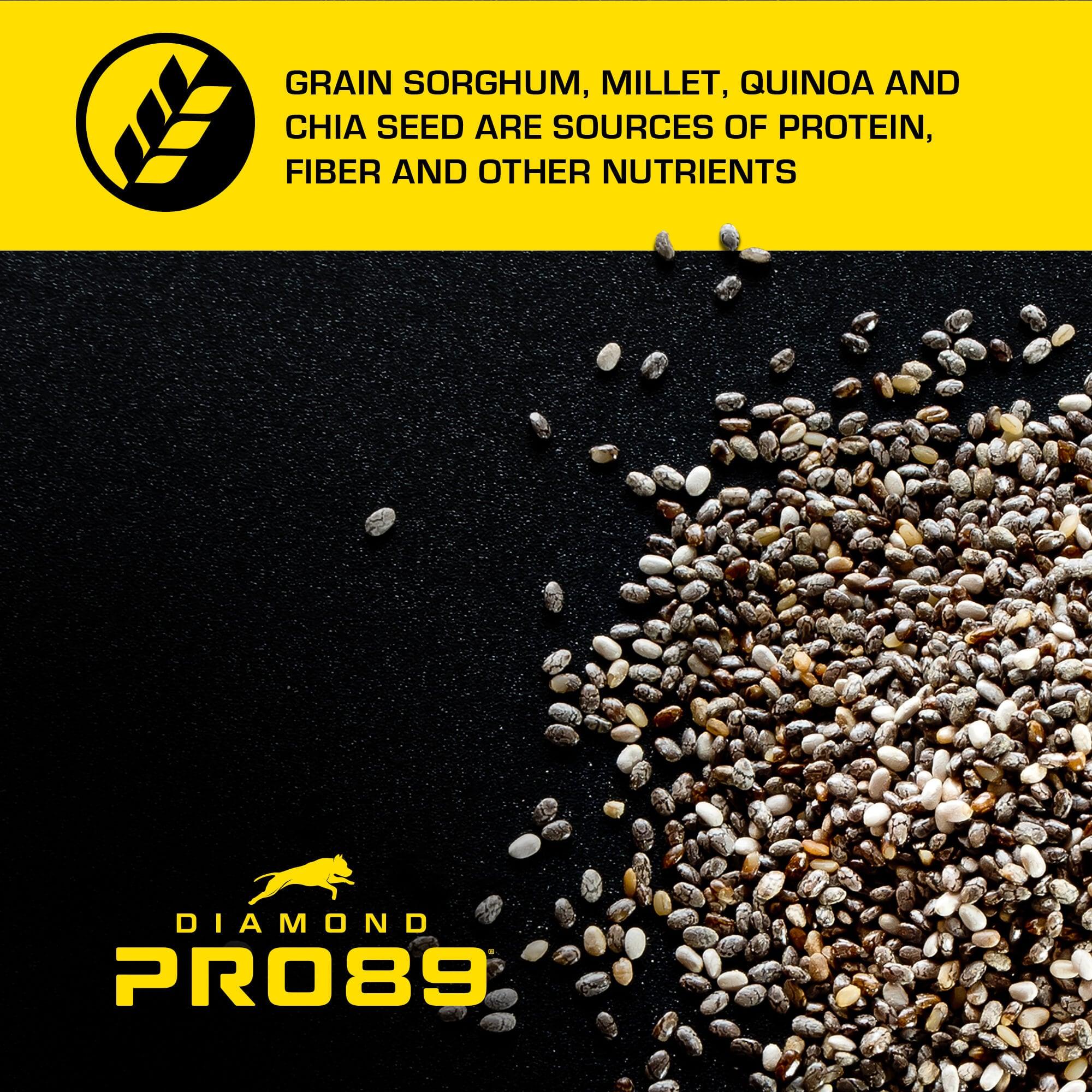 Diamond Pro89 Ancient Grains