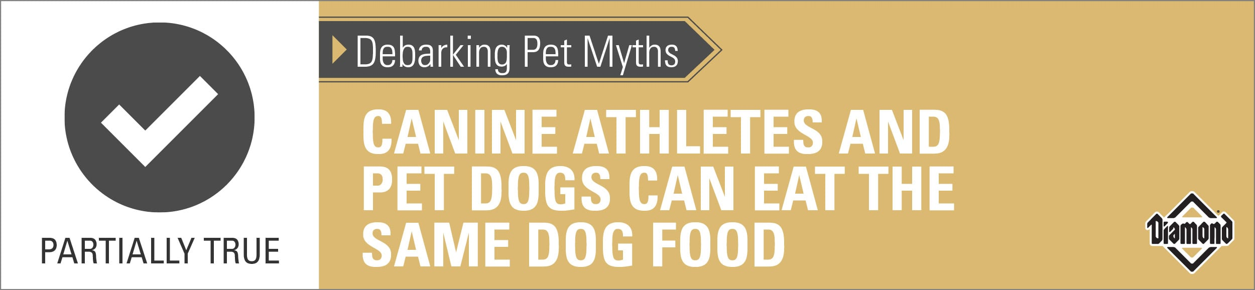 Partially True: Canine Athletes and Pet Dogs Can Eat the Same Dog Food Depending on Their Activity Level | Diamond Pet Foods