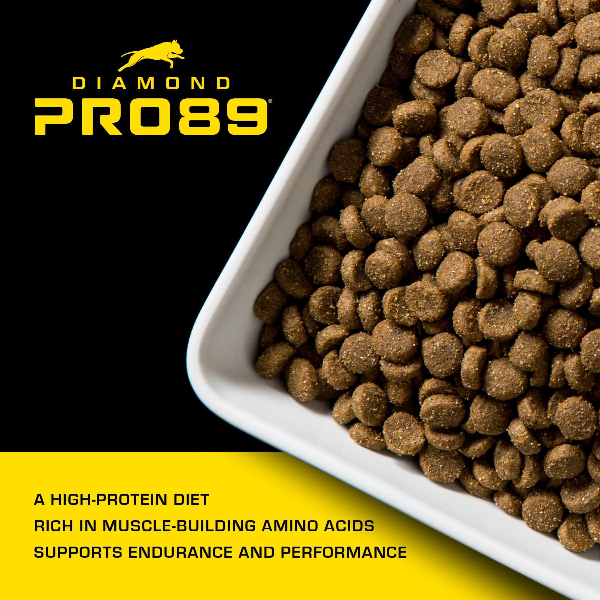 bowl of Pro89 kibble | Diamond Pro89