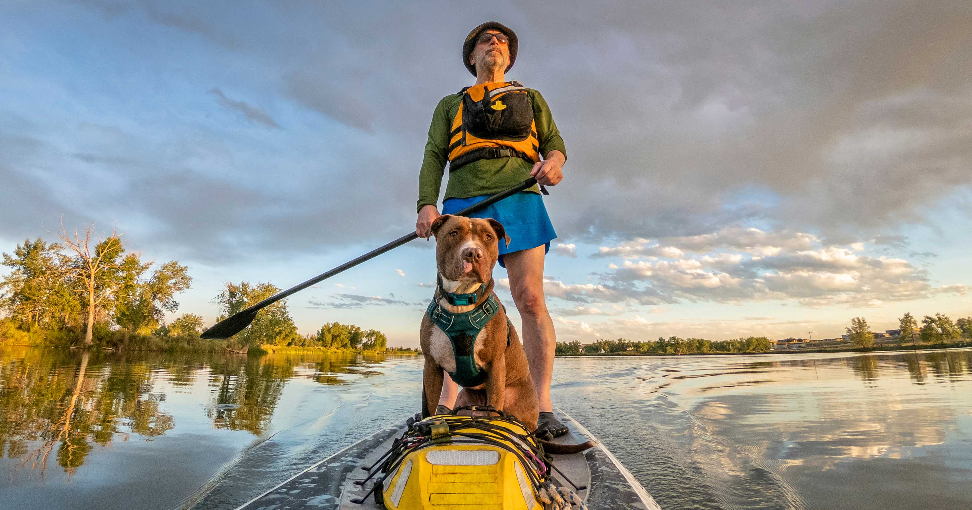 Older Man on Stand-Up Paddle Boat with Pit Bull Dog | Diamond Pet Foods
