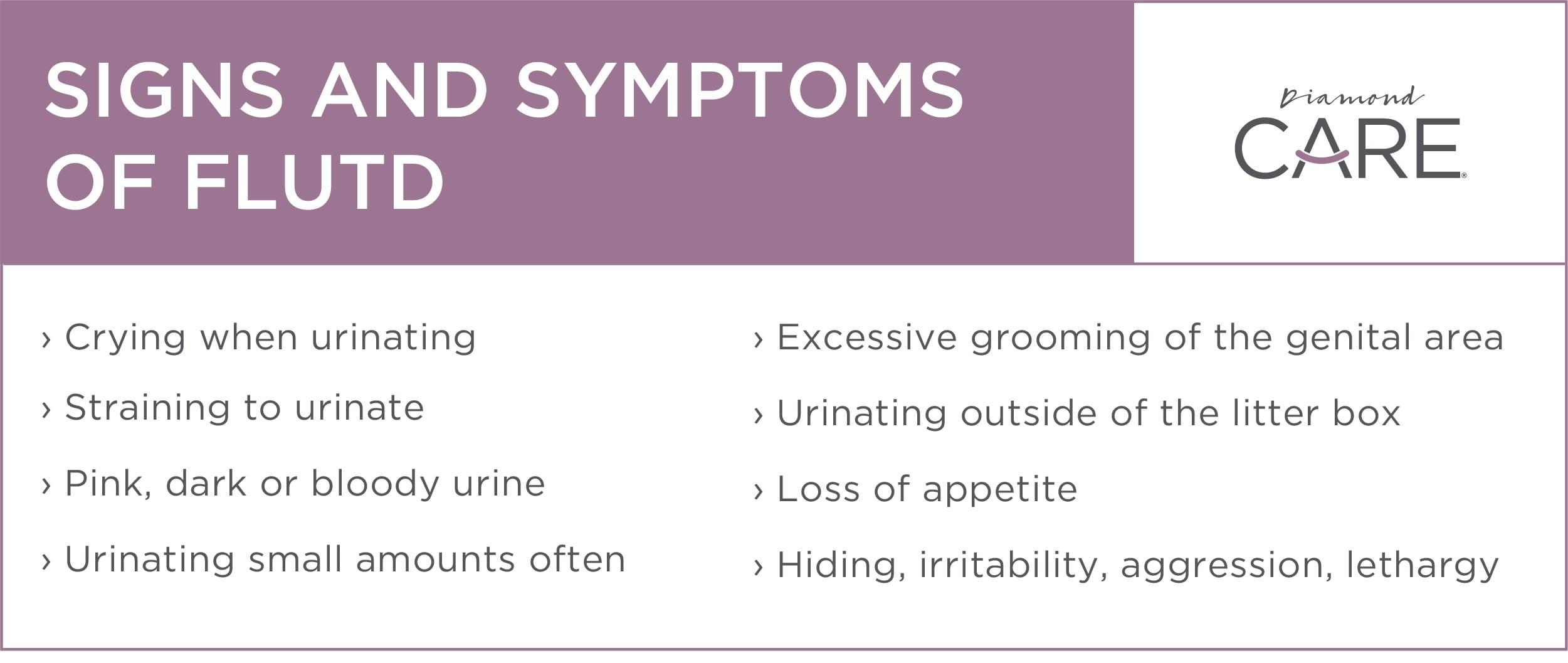 Signs and Symptoms of FLUTD | Diamond Pet Foods