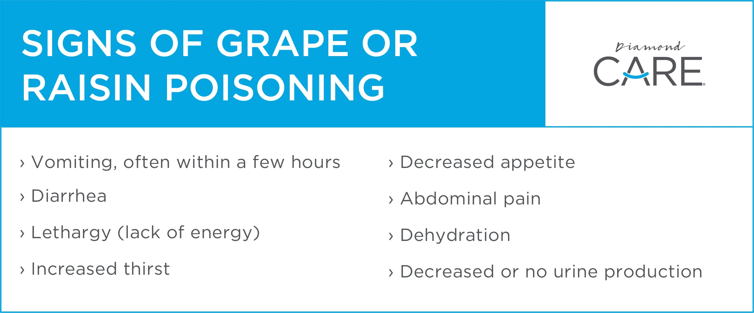 Signs of Grape or Raisin Poisoning | Diamond Pet Foods