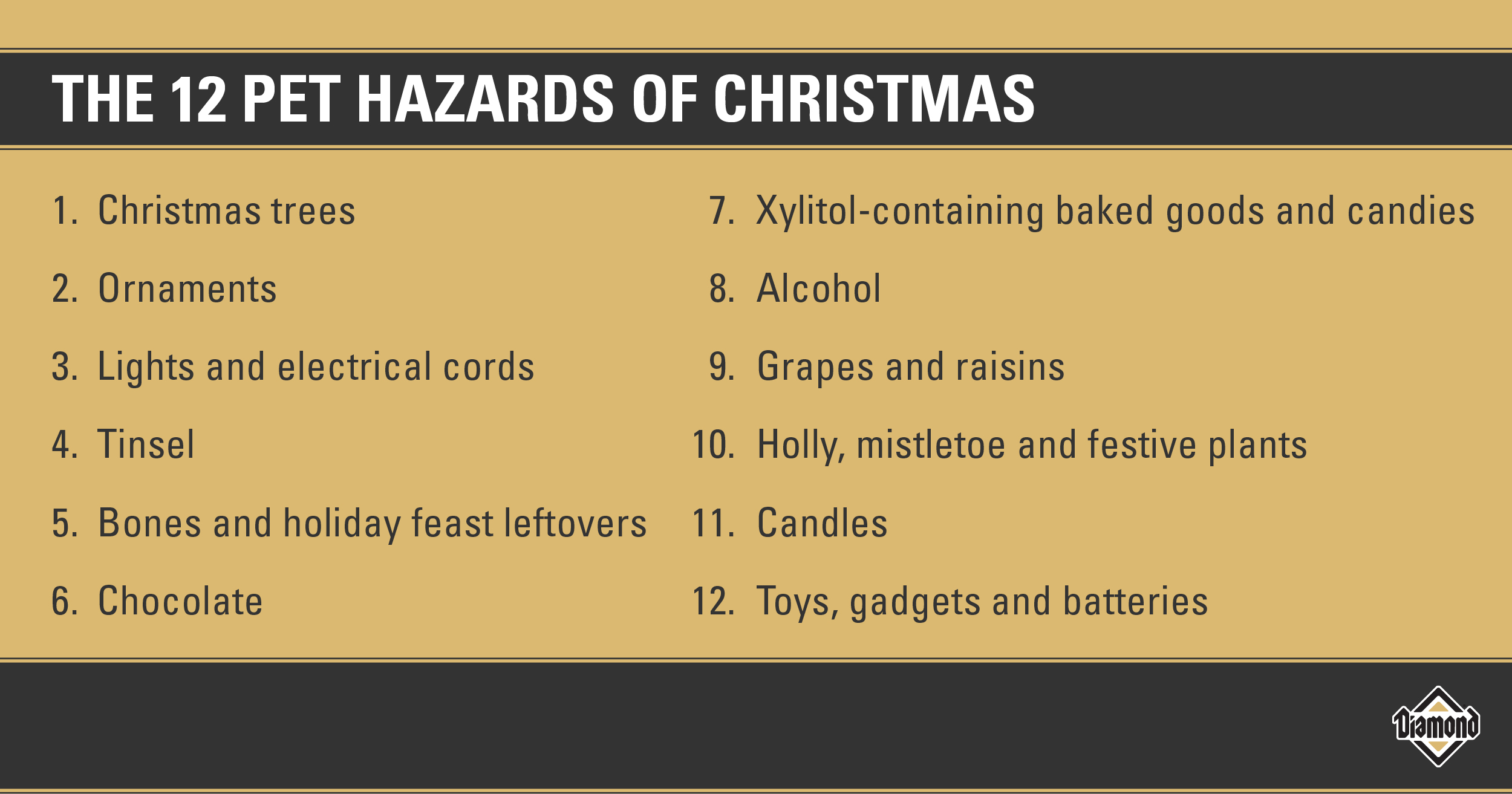The 12 Pet Hazards of Christmas | Diamond Pet Foods