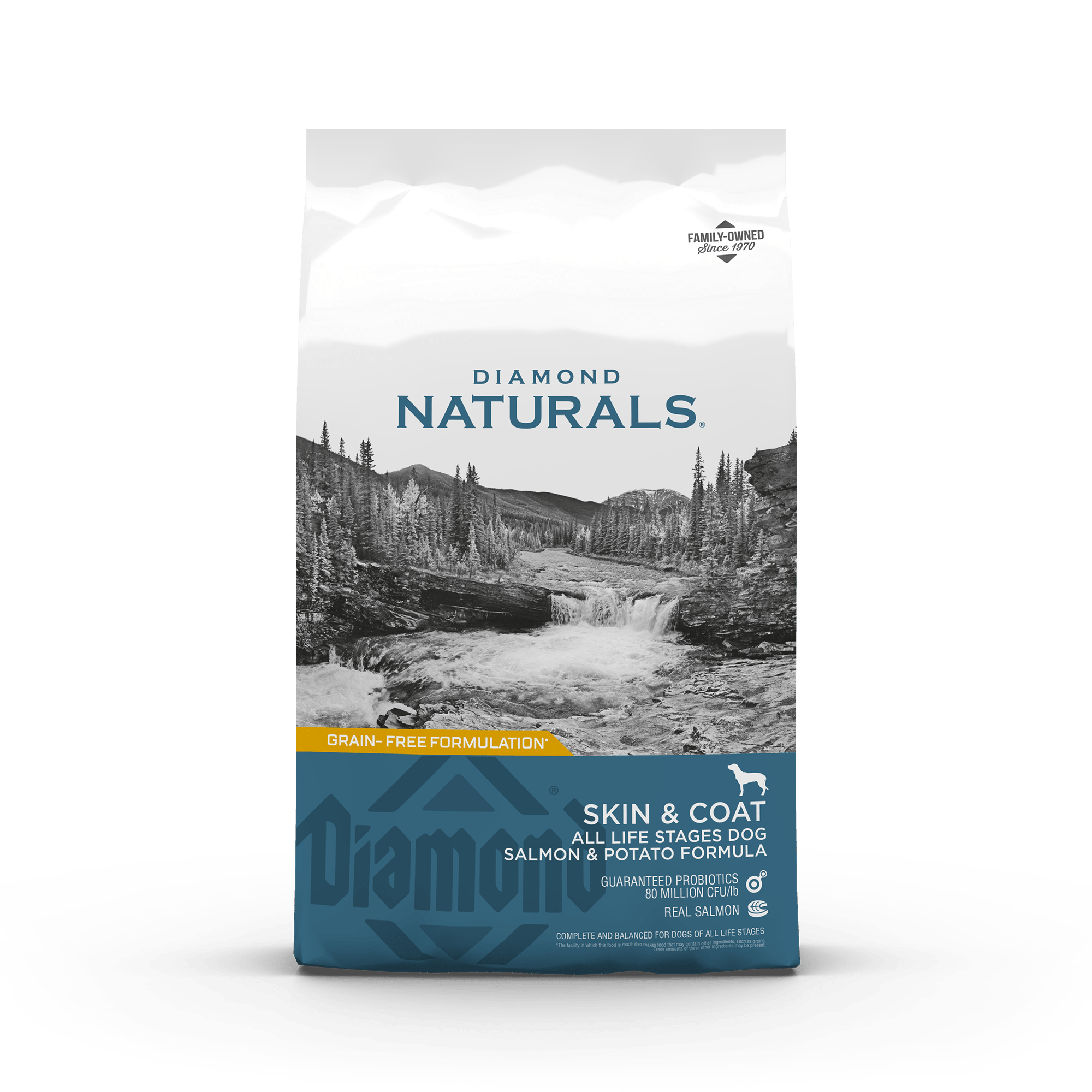 Diamond Naturals Skin & Coat All Life Stages Dog Salmon & Potato Formula front of bag | Diamond Pet Foods