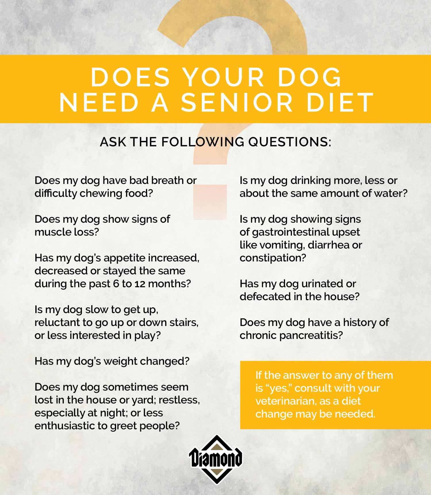 Does Your Dog Need a Senior Diet? | Diamond Pet Foods