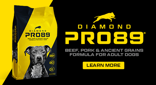 Pro89 bag and logo