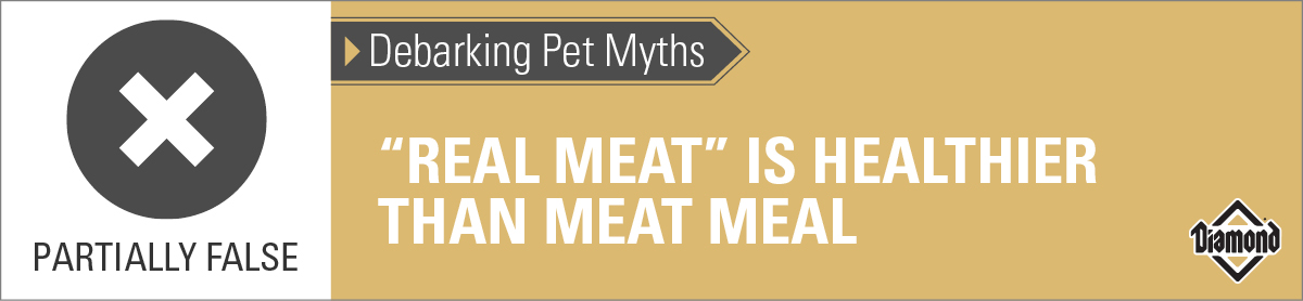 Real Meat May Not Be Healthier Than Meat Meal | Diamond Pet Foods