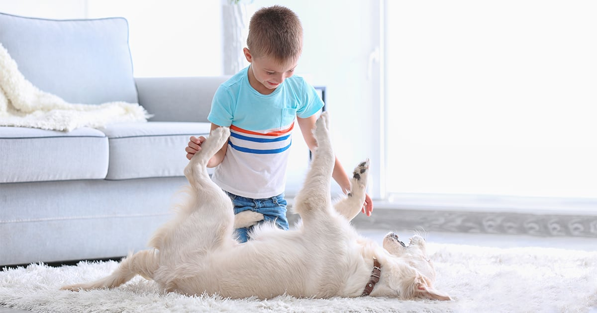 Boy Playing with His Dog | Diamond Pet Foods