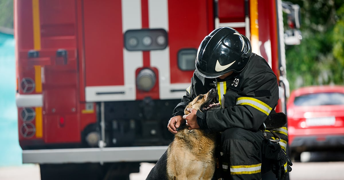 Firefighter Petting a Dog | Diamond Pet Foods