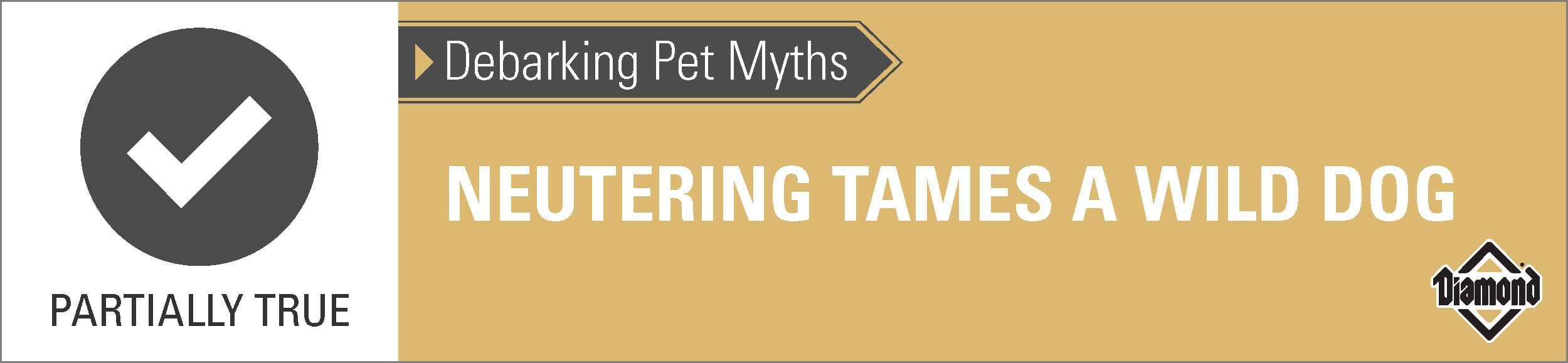Partially True: Neutering Tames a Wild Dog | Diamond Pet Foods