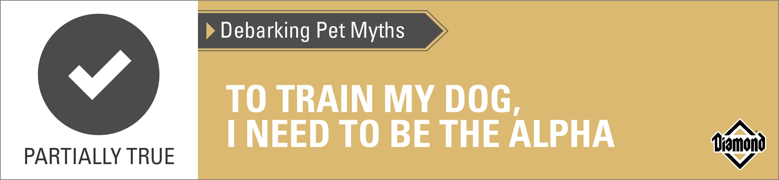 Partially True: To Train My Dog, I Need to Be the Alpha | Diamond Pet Foods
