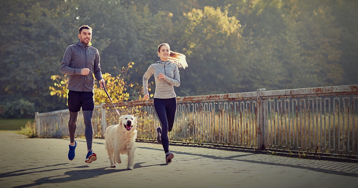 Couple Running with Dog | Diamond Pet Foods