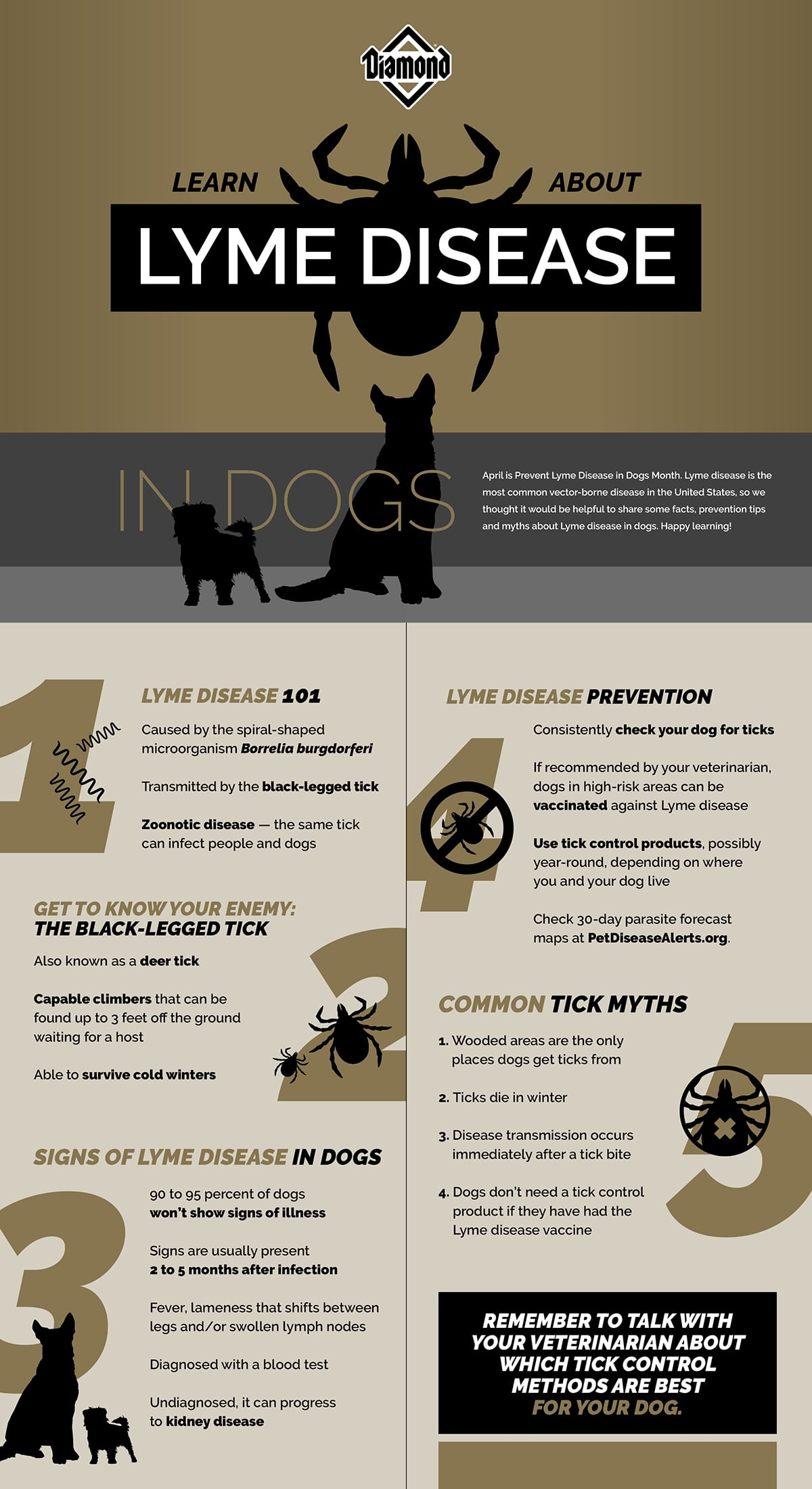 Lyme Disease in Dogs Graphic Guide   Diamond Pet Foods
