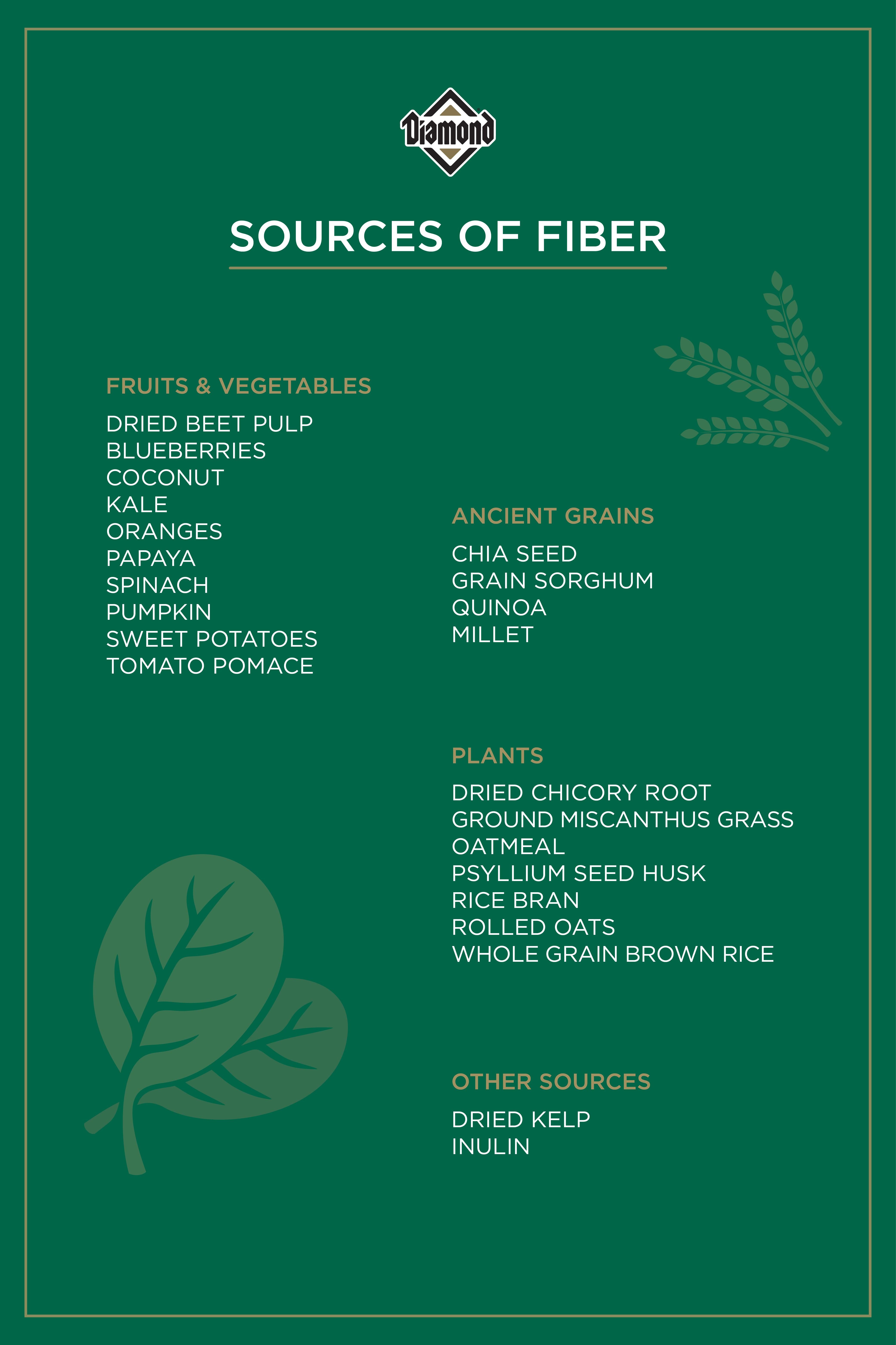 Sources of Fiber Guide | Diamond Pet Foods