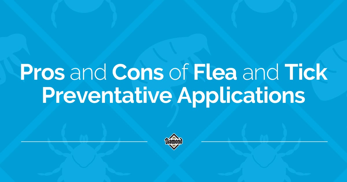 Pros and Cons of Flea and Tick Preventative Applications Text Graphic | Diamond Pet Foods